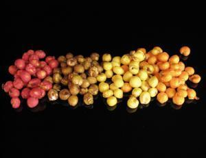 Chytil Foukaná kukuřice Med 20gr