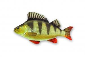 Plyšová ryba Okoun
